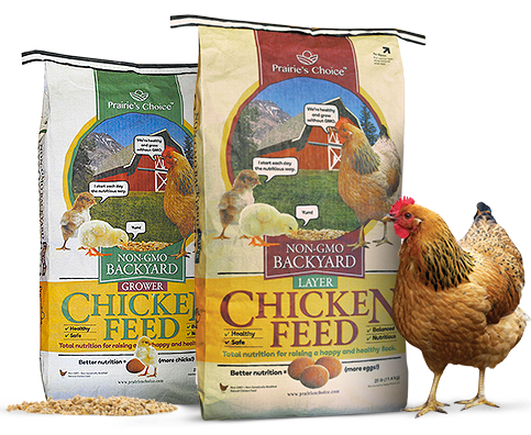 Bags of Non-GMO Chicken Feed